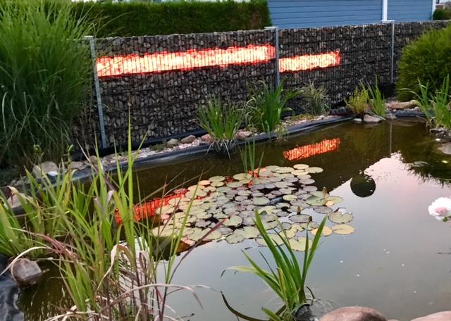 Mit Gabionen Beleuchtung Gabionenzäune im Garten zum Leuchten bringen