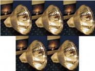Halogen Leuchtmittel 35 mm 20 Watt 5er Pack