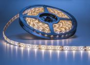 LED Streifen weiß 5 m 300 x 3528 LED kaltweiß IP63