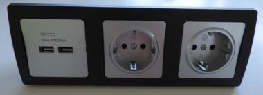 DELPHI 1x USB 2er 2x Steckdose silbern Rahmen schwarz