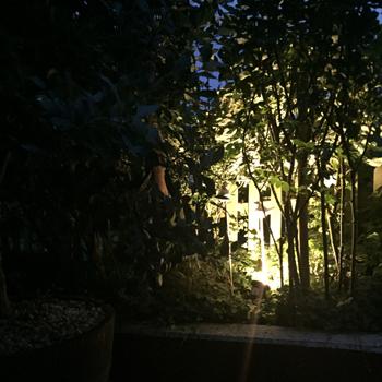 Berühmt LED Erdspießstrahler für Garten und Vorgarten | DY85